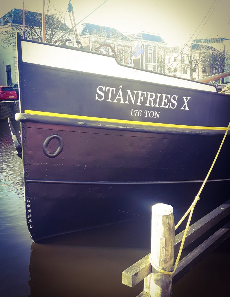 Stanfries X